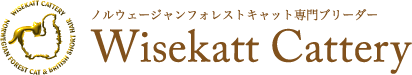 ノルウェージャンフォレストキャットのブリーダー【Wisekatt Cattery】