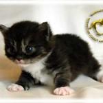 baby062909-0608-04-03